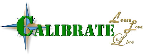 calibrate-services-page